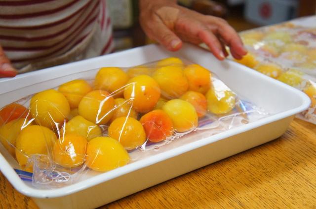 梅干し作り|梅酢|画像